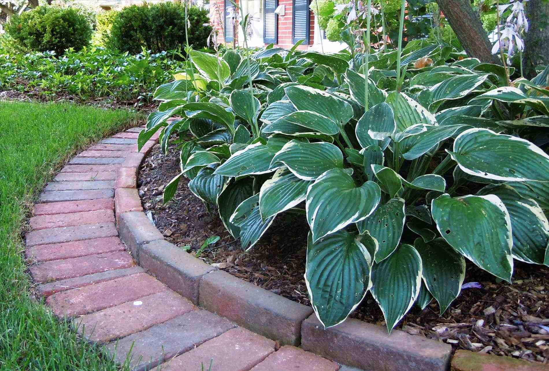 Aluminum Landscape Edging Home Depot | Colmet Edging | Home Depot Landscape Edging