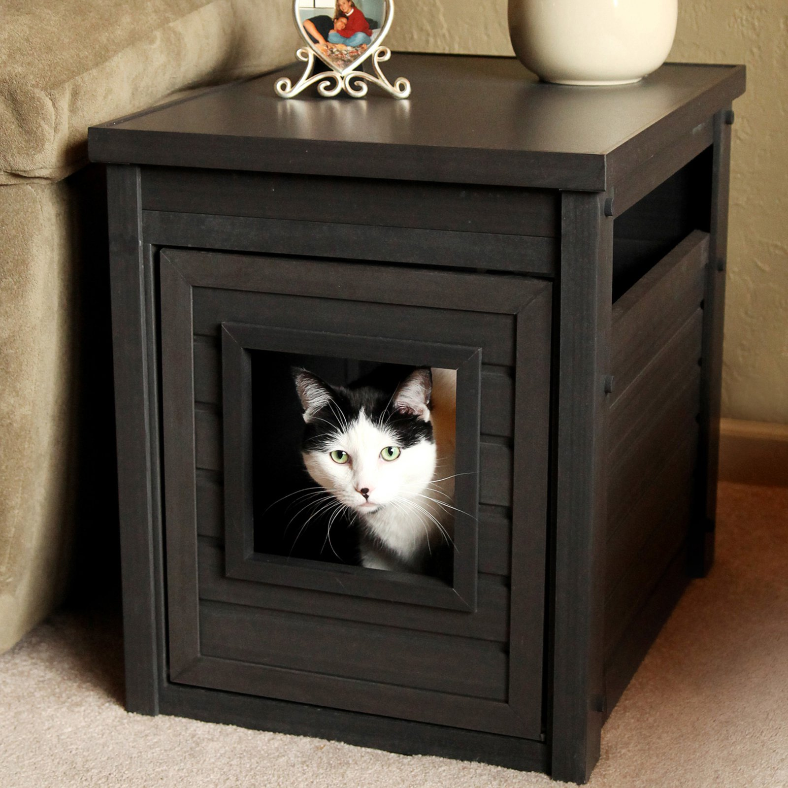 Ideas Fancy Litter Boxes Diy Hidden Cat Litter Box Hidden Cat