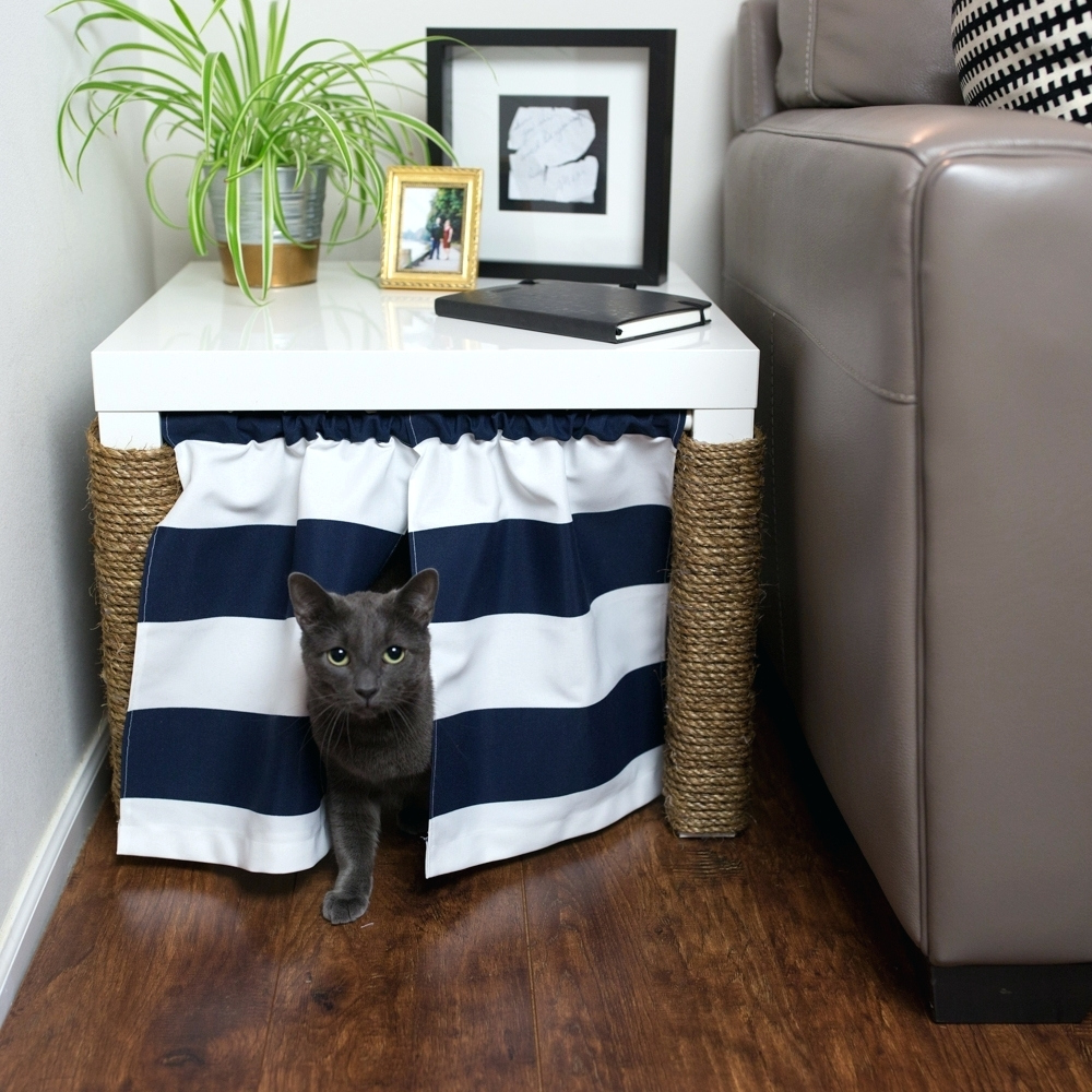 Hidden Cat Litter Box | Hidden Cat Litter Box Diy | Cat Box with Lid