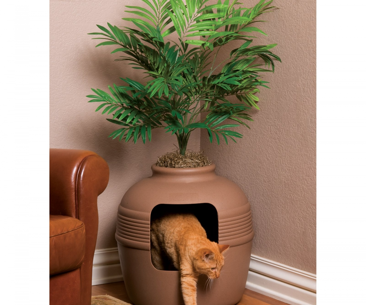 Hidden Cat Litter Box | Litter Box Ideas | Cat Box with Lid