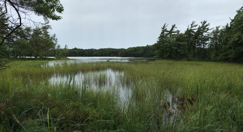 Ludington State Park Reservations | Michigan State Park Camping | Mdnr