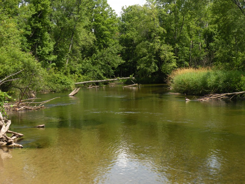 Mi Dnr Reservations | Mi State Campgrounds | Michigan State Parks Camping