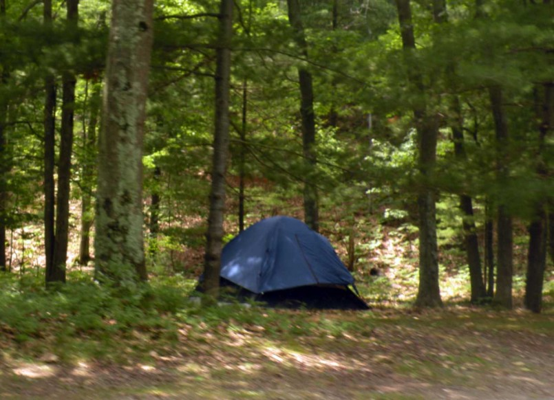 Mi Dnr Reservations | Michigan Campgrounds | State Campgrounds In Mi