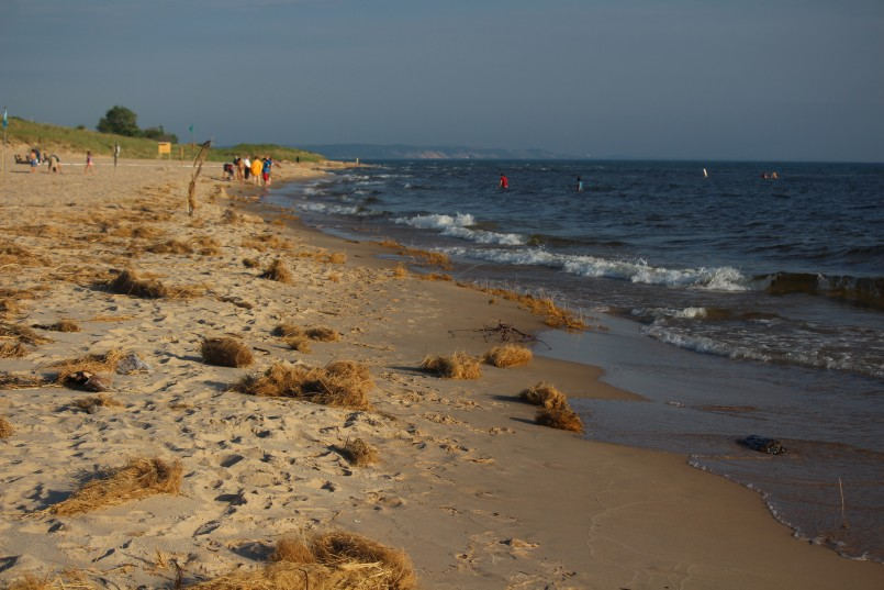 Michigan Parks | Michigan State Park Reservation | Ludington State Park Reservations