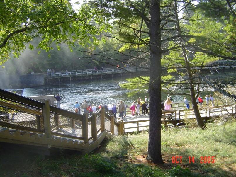 Parks In Michigan | Pentwater Mi Campgrounds | Ludington State Park Reservations