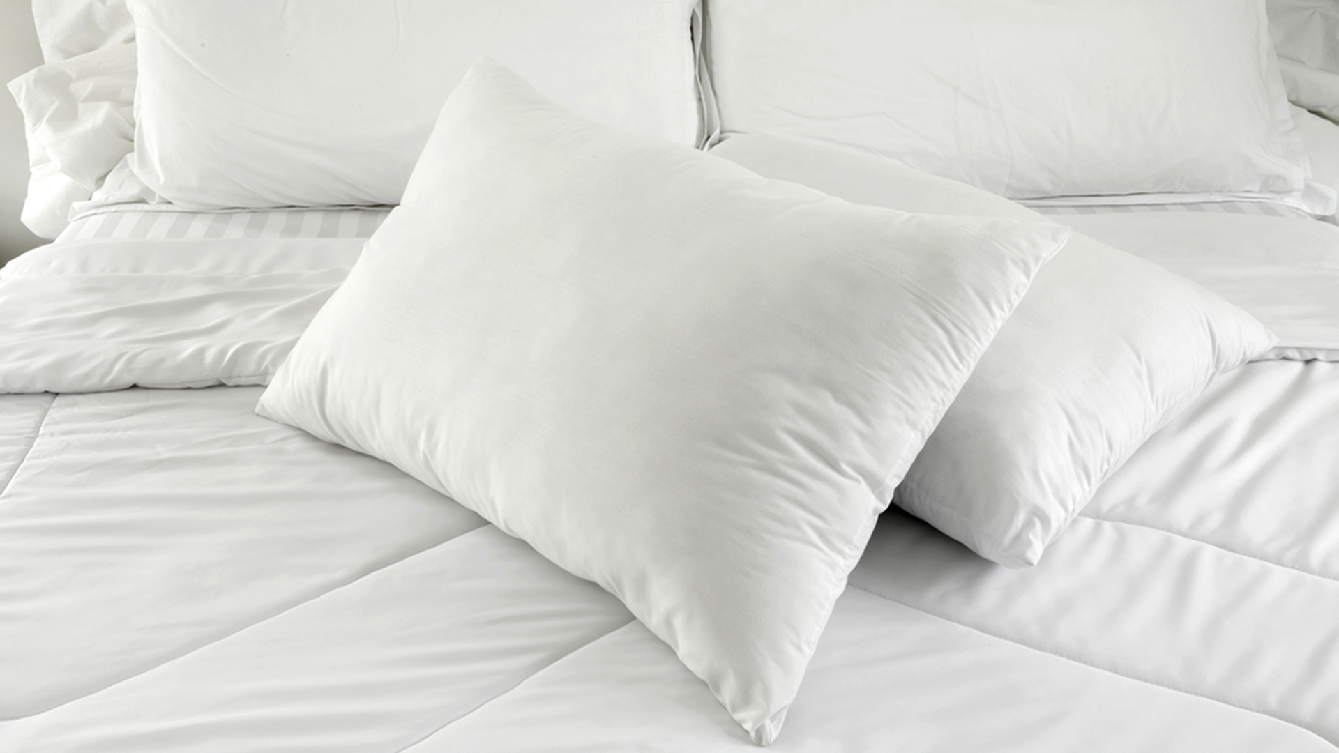 Extra Comfort Bed Pillow with Arms for Any Purpose: Bed Pillow With Arms | Bed Wedge Pillow Target | Bed Rest Lounger