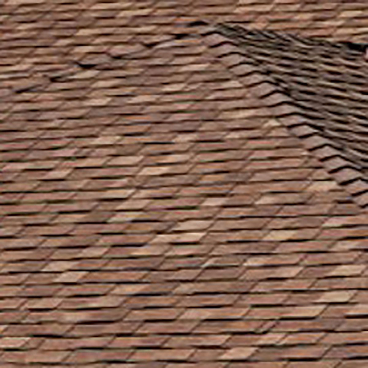 Wood Shims Lowes | Heritage Shingles | How to Install Cedar Shingles